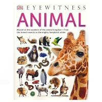 【首页抢券300-100】DK Eyewitness Animal 目击者系列 动物 DK出版社 少年科普读物 全彩大图