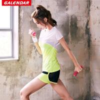 【领券立减100元】Galendar瑜伽服套装2018新款女瑜珈健身跑步两件套速干透气运动短袖套装GA2063T2