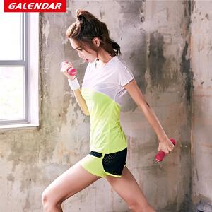 【限时秒杀】Galendar运动健身两件套女士运动休闲跑步两件套速干透气运动短袖套装GA2063T2
