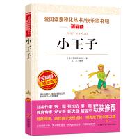 小王子/导读版新课标必读丛书课外阅读青少版(无障碍阅读 彩插本)