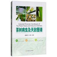 茶树病虫及天敌图谱 正版 唐美君,肖强 9787109240582