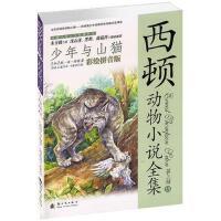 少年与山猫:彩绘拼音版 孙淇 9787504222794睿智启图书