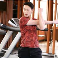 速干T恤跑步男士户外新品新款 透气吸汗体训服女衣服运动短袖
