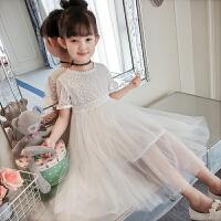 女童夏装2款蕾丝短袖裙子女儿童中大童纱裙女孩公主裙连衣裙