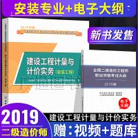 建设工程计量与计价实务(安装工程)/2019年二级造价工程师职业资格考试培训教材