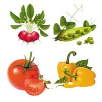 餐�d蔬菜水果���N�� 蔬菜水果田�@���N���N房柜子�N�冰箱�N餐�d��d瓷�u�N玻璃�N防水 翠�G色 中
