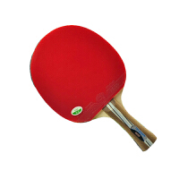 729  初级2020  乒乓球拍 成品拍 双反胶