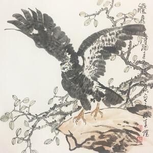贾宝眠《雄鹰展翅》著名画家