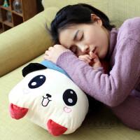 可爱卡通熊猫抱枕 大号毛绒玩具公仔双人靠垫枕头可拆洗生日礼物