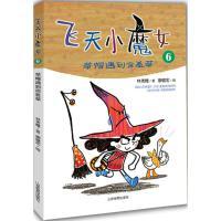飞天小魔女 (6) 山东教育出版社