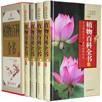 植物百科全书(小插盒) 精装插盒 全四卷 线装书局 598