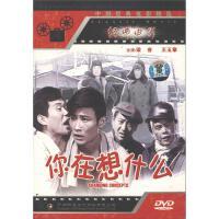 你在想什么DVD( 货号:7885164349)