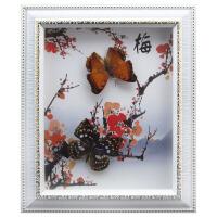蝴蝶标本相框新品真蝴蝶标本相框组合画框家居手工装饰工艺品生日礼品墙画 10寸