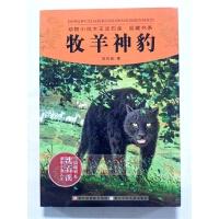 正版 牧羊神豹 沈石溪著 9787534270550 浙江少年儿童出版社