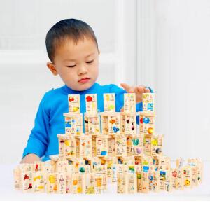 【领券立减50元】米米智玩 盒装100片识字多米诺骨牌积木木制拼音识字多米诺儿童早教益智玩具儿童节活动专属
