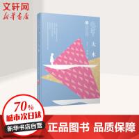 【荣获2018中国好书】大水 赵菱 著 曹文轩系列儿童文学奖