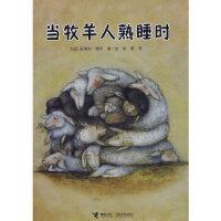 【新书店正版】当牧羊人熟睡时,(法)德昂 /绘,徐颖,接力出版社9787544805315