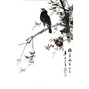 江寒汀(花鸟)中国美术家协会会员,美协上海分会理事