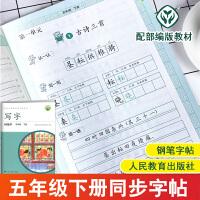 写字教材五年级下册字帖 人教部编版练字帖钢笔字