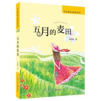 安武林散文精品系列:五月的麦田
