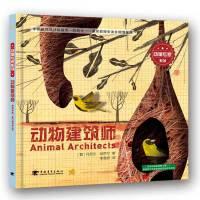 动物专家系列:动物建筑师
