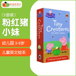 粉红猪小妹 Peppa Pig 5册英文原版绘本 Tiny Creatures and Other Stories 精