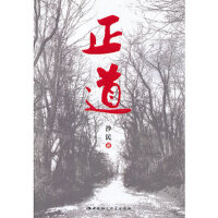 【新书店正版】正道,沙民,中国社会科学出版社9787516120422