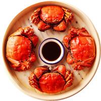 谷源道大闸蟹六月黄鲜活螃蟹海鲜水产 1.6两-1.7两12只装