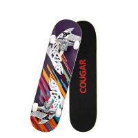 四轮滑板 青少年刷街板儿童男女生双翘公路滑板