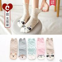 女士中筒袜纯棉袜户外新品韩国学院风运动可爱袜子女长筒袜四季日系