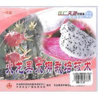 火龙果大棚栽培技术VCD( 货号:103509003400307)
