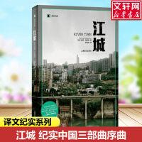 江城 上海译文出版社
