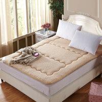 伊迪梦家纺 榻榻米羊羔绒床垫 超柔保暖防滑床褥子学生宿舍单人可折叠打地铺加厚垫被双人床0.6/0.9/1/1.2/1.3