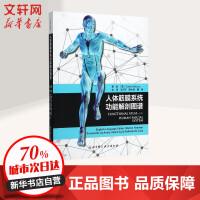人体筋膜系统功能解剖图谱 (意)卡拉・斯德科(Carla Stecco) 著;王行环,贺大林,魏强 译