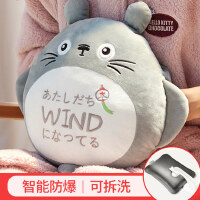 龙猫热水袋充电式防爆毛绒可爱暖水袋��宝宝女敷肚子电暖手宝热宝