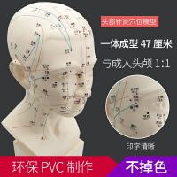 高清头部穴位图模型针灸中医刻字头模带穴位经络全脸面部假头腧穴人体按摩图