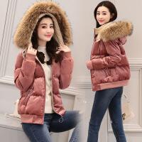金丝绒女短款冬季新款韩版时尚棉衣加厚大毛领外套小棉袄