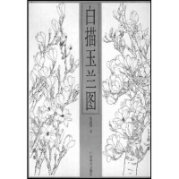 白描玉兰图 范新国 广西美术出版社