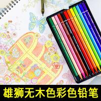 雄狮无木彩色铅笔套装儿童手绘涂鸦填上美术画画彩色铅笔套装