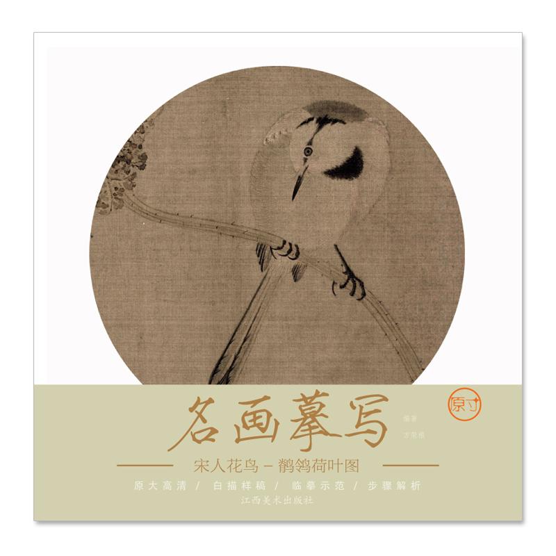 名画摹写——宋人花鸟 · 鹡鸰荷叶图 大图临摹范本,细节步骤全展现
