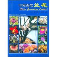 世界观赏兰花 9787538141146 辽宁科学技术出版社 张毓,张佐双,赵世伟