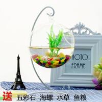 小鱼缸迷你缸创意玻璃斗鱼鱼缸悬挂小型生态造景超白办公桌面鱼缸