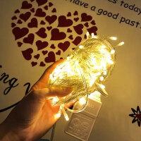 圣诞节装饰LED彩灯闪灯串灯满天星婚庆装饰灯小灯串户外串灯浪漫温馨灯饰