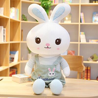 毛绒玩具儿童生日礼物送女生布朗小熊公仔玩偶抱抱熊布娃娃兔兔