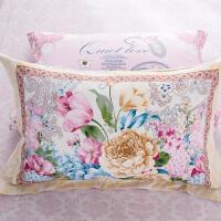 伊迪梦家纺 床品全棉枕套 纯棉斜纹高支高密枕头套定位版一款两色 久洗久用一对装HC348