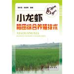 小龙虾稻田综合养殖技术