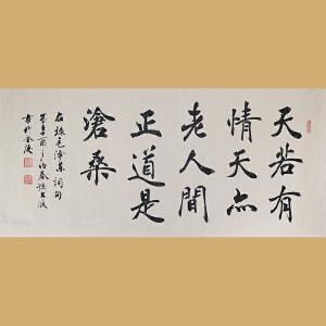 中国实力派青年书法家孙文波先生作品――天若有情天亦老  人间正道是沧桑