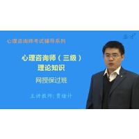 非纸质书!!2019年5月心理咨询师(三级)理论知识网授保过班