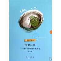 梅里山鹰--沈石溪动物小说精选/青少年文库