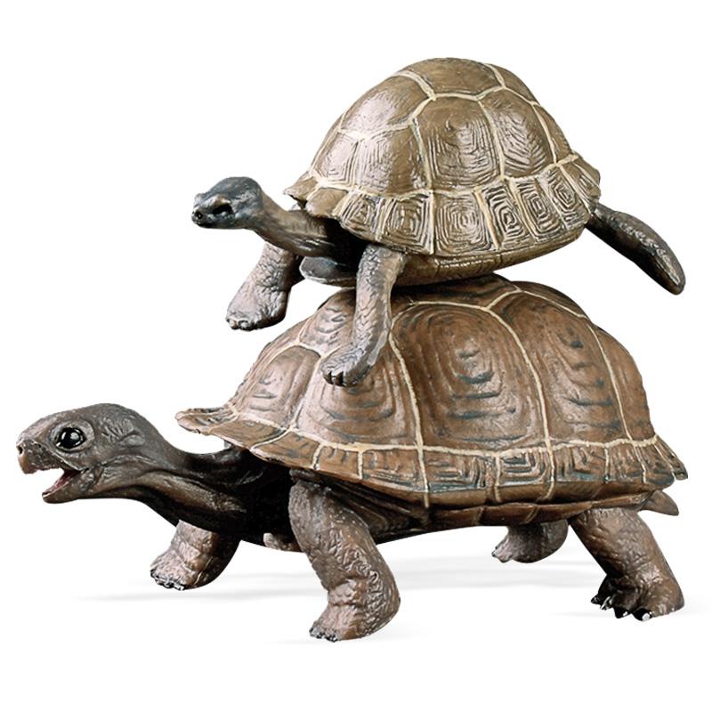 儿童仿真海洋野生动物龟模型鳄龟 海龟 陆龟  象龟 草龟 金钱龟